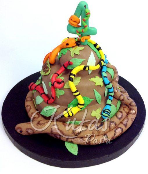 Yılanlı Pasta