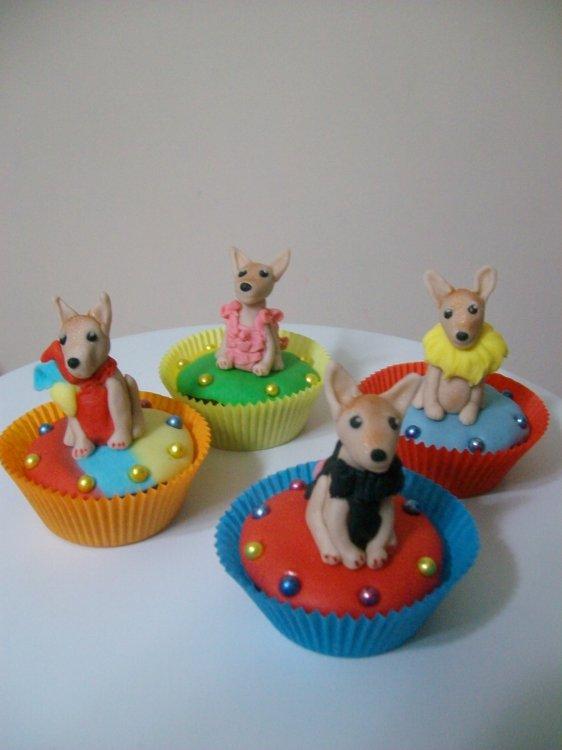 Chihuahua Köpek Cupcake