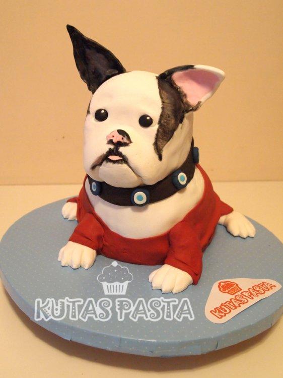 Köpekli Pasta Bulldog
