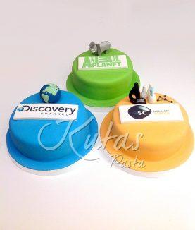 Kurumsal Pasta Discovery Chanel