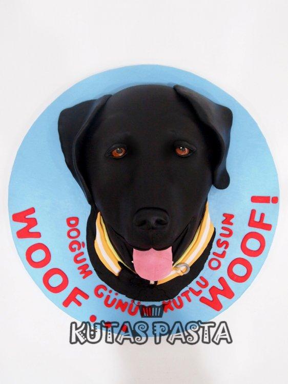 Köpekli Pasta Labrador