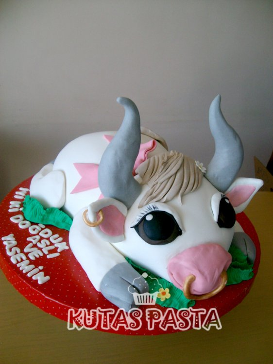 Boğa Pastası