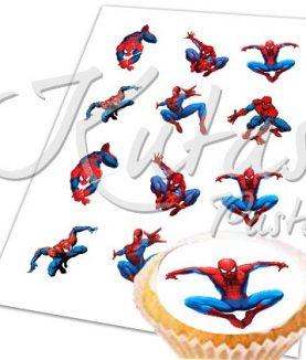 Resimli Kup kek Örümcekadam